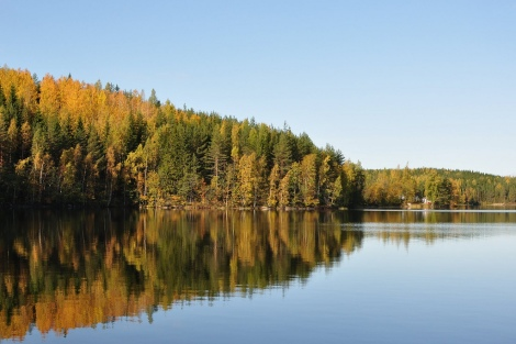 Autumn Lake in Finland by flickr user puputtaja