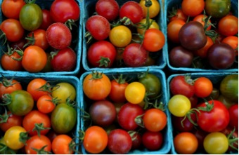 Whether you call it a fruit or a vegetable, tomatoes are a super-food to incorporate in our diets.